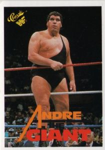 andre-the-giant-130-wwf-1990-titan-sports-classic-wrestling-trading-card-21834-p